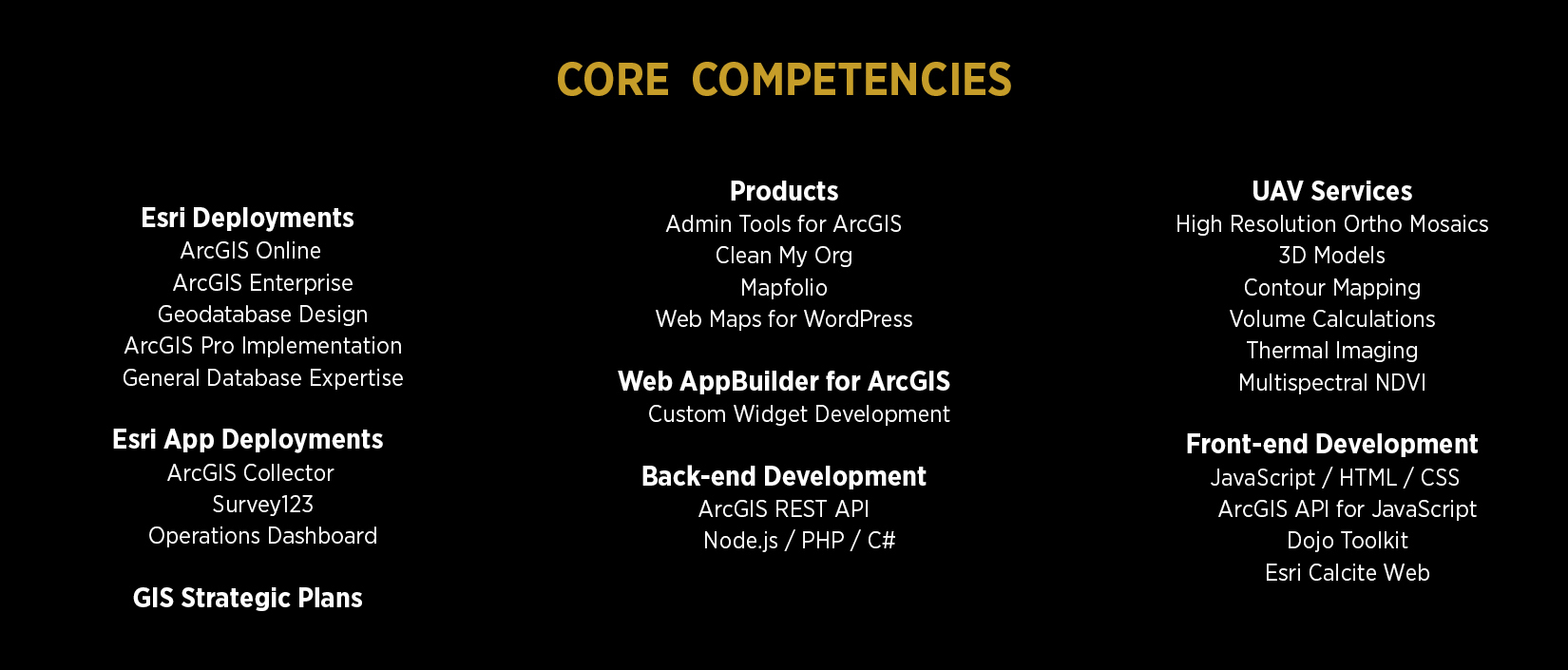 GEO Jobe Core Competencies